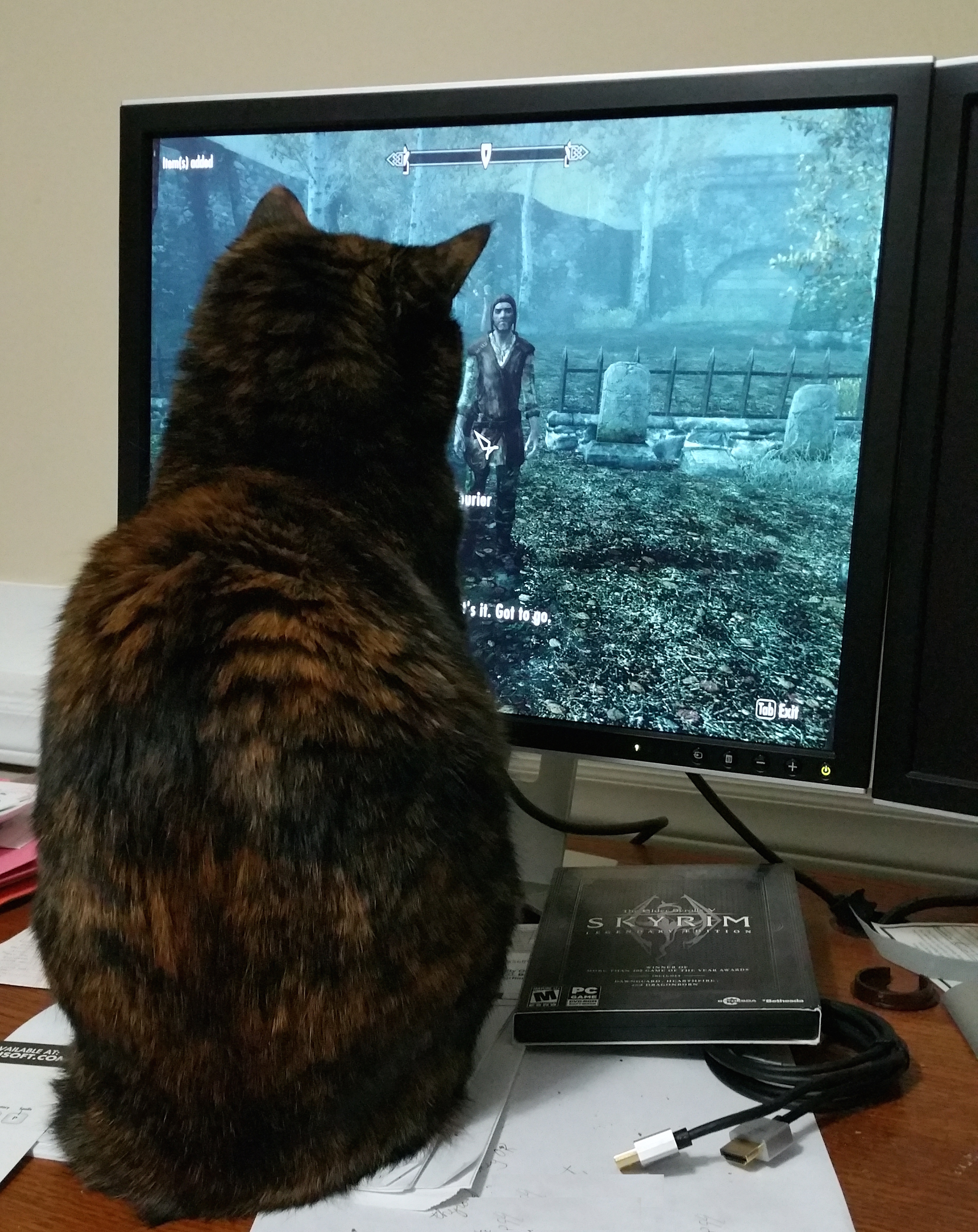 Phaedra playing Skyrim