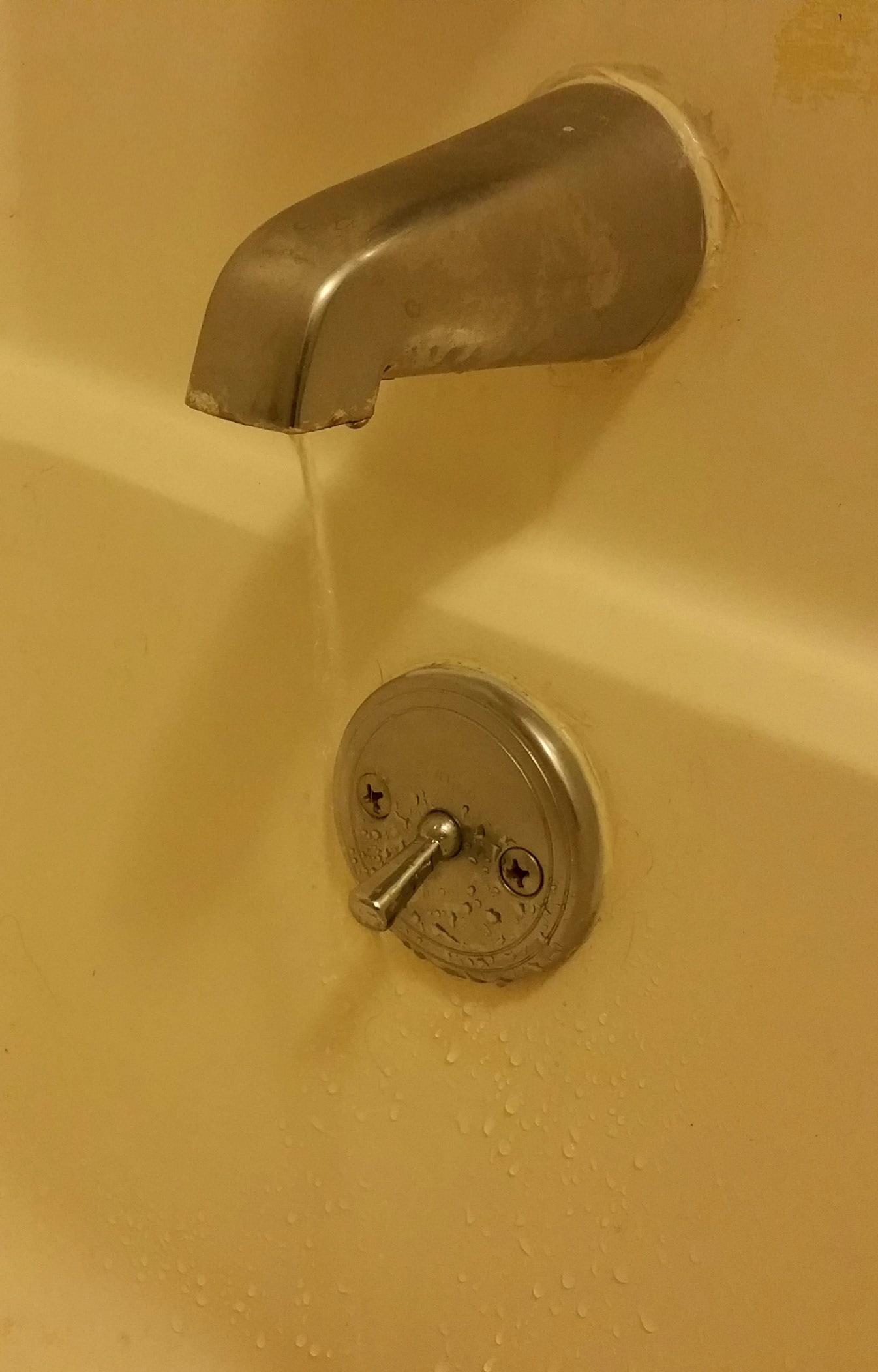 Leaky bathtub faucet - Y Ceffyl Du